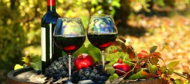 Vino in Puglia   Cantine aperte con Movimento Turismo del Vino