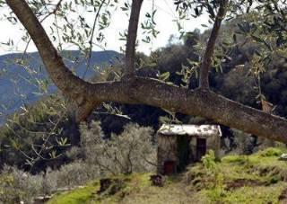 Agriturismo Castel Dho