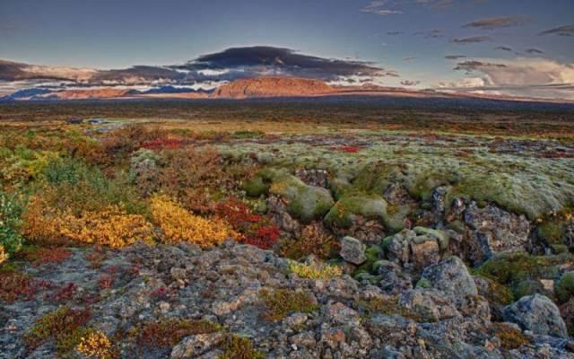 Nuovi viaggi e nuove oppurtunità per scoprire la natura islandese