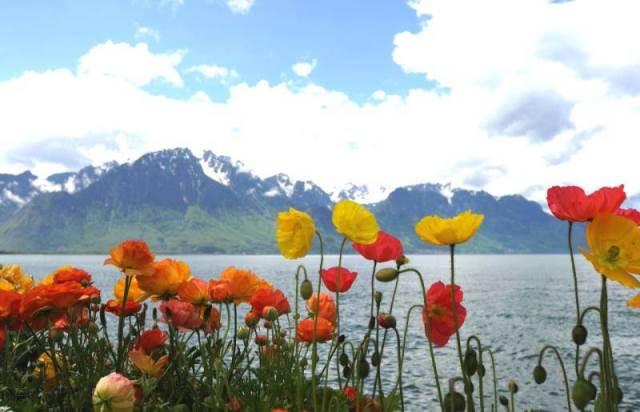 località svizzere estive