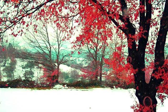 #EasyLoves   L'atmosfera natalizia si respira ancora!