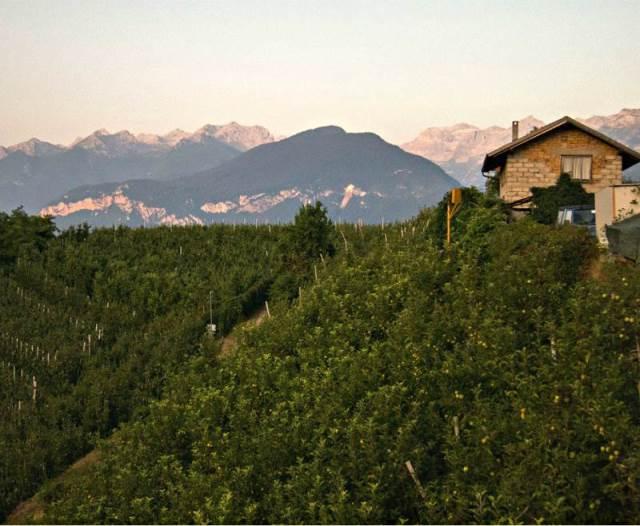 Vacanze in Val di Non