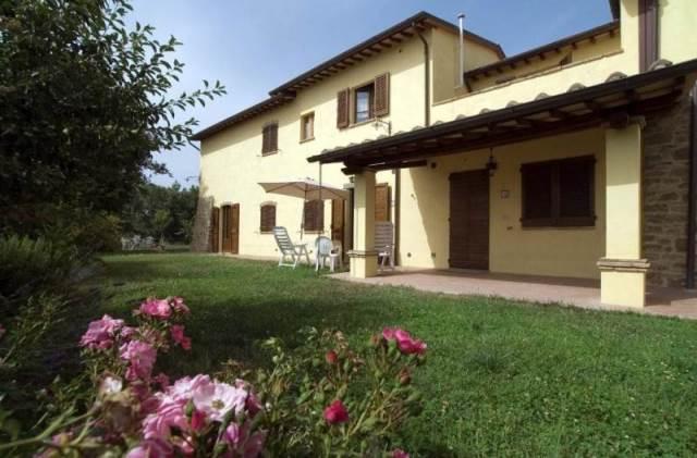 La Collina dei Ciliegi – Perugia (PG) | Umbria Agriturismi