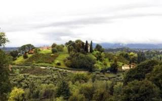 Cosa fare e cosa vedere: motivi per visitare Marca Trevigiana