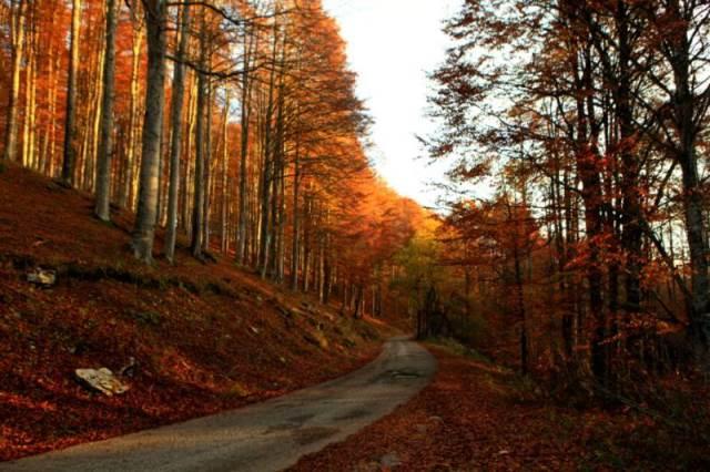Vacanze nella Marca Trevigiana