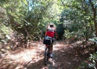 Hotel Akropolis - Escursione in bicicletta