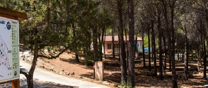 Camping Il Golfo – Orosei (NU) | Sardegna Camping