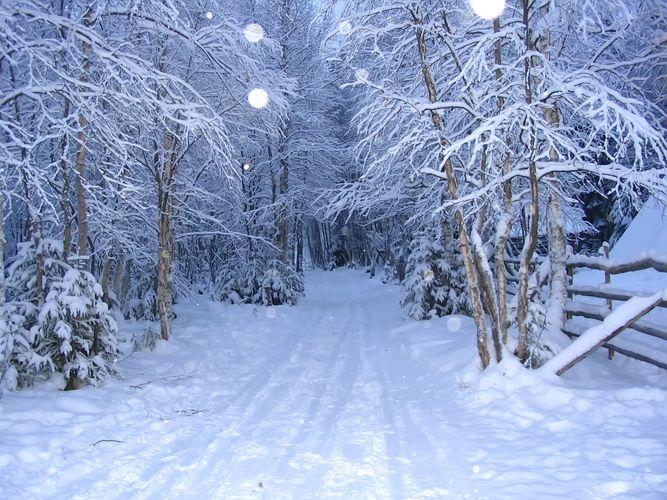 inverno al circolo polare artico
