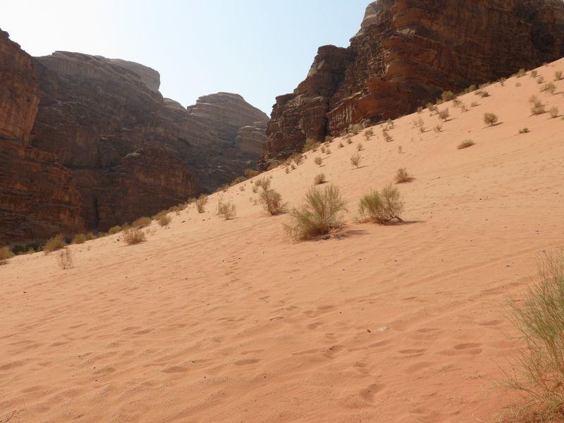 giordania deserto del wadi rum