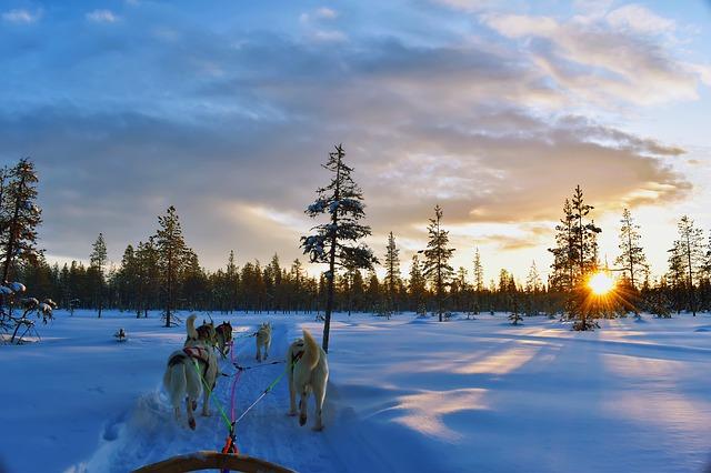 lapponia finlandese esperienza a levi