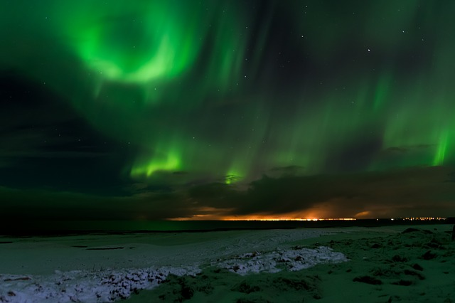 aurora borelae