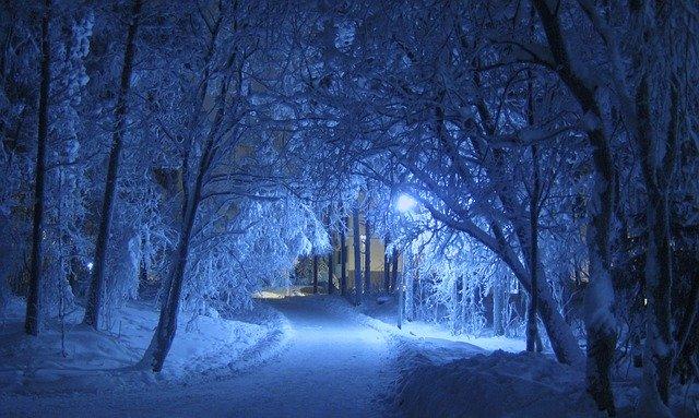 inverno artico