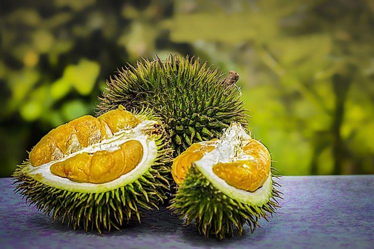 durian frutto locale